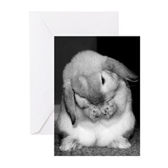 Bunny Birthday Wishes Greeting Cards (Pk of 10)