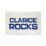 clarice rocks Rectangle Magnet (10 pack)