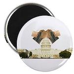 Teabag The Capitol Magnet