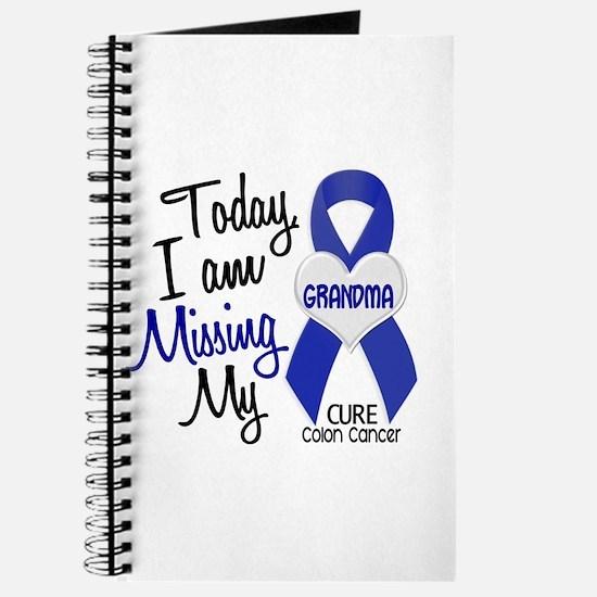 Missing My Grandma 1 CC Journal