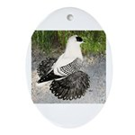 Swallow Pigeon In Field Oval Ornament