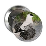 "Swallow Pigeon In Field 2.25"" Button (10 pack"