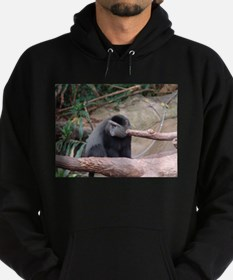 Zoo Monkey Hoody