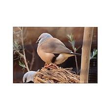 Bird Photograph Rectangle Magnet