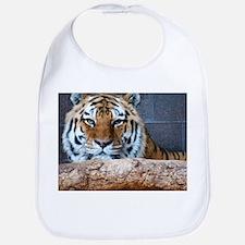 Tiger Photograph Bib