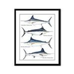 4 Marlin Framed Panel Print