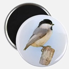 """Chickadee 2.25"""" Magnet (100 pack)"""