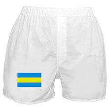 Costa Rica Flag (1821) Boxer Shorts