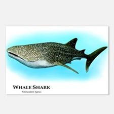 Whale Shark Postcards (Package of 8)