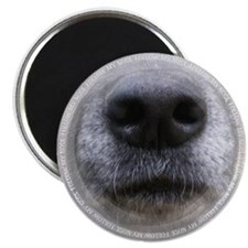 Follow My Nose Magnet