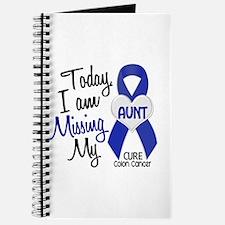 Missing My Aunt 1 CC Journal