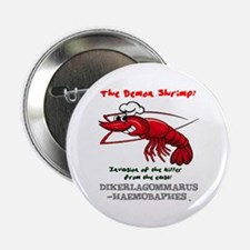 """THE DEMON SHRIMP - DIKERAGOMMARUS 2.25"""" Button"""