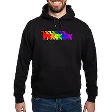 Rainbow Irish Setter Hoodie