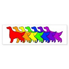 Rainbow Irish Setter Bumper Bumper Sticker