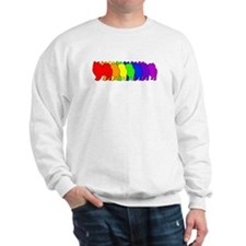 Rainbow American Eskimo Sweatshirt
