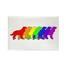 Rainbow AWS Rectangle Magnet