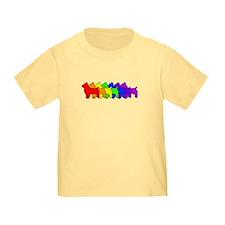 Rainbow Australian Terrier T
