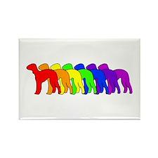 Rainbow Bedlington Terrier Rectangle Magnet