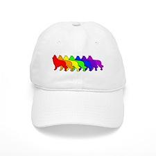 Rainbow Tervuren Baseball Cap
