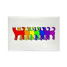 Rainbow Canaan Dog Rectangle Magnet