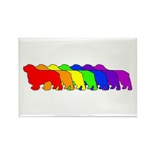 Rainbow Clumber Spaniel Rectangle Magnet