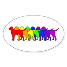 Rainbow Curly Oval Decal