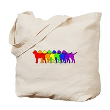 Rainbow Curly Tote Bag
