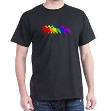Rainbow Springer T-Shirt