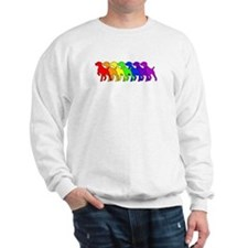 Rainbow GSP Sweatshirt