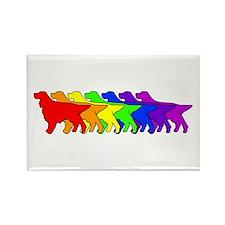 Rainbow Gordon Rectangle Magnet