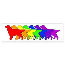 Rainbow Gordon Bumper Car Sticker