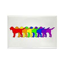 Rainbow Swissie Rectangle Magnet