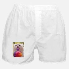 Colorful Kitty Boxer Shorts
