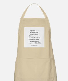 NUMBERS  31:16 BBQ Apron
