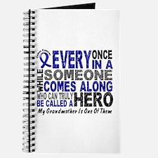HERO Comes Along 1 Grandmother CC Journal