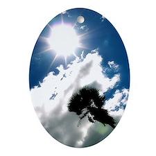 Palm Tree & Sun Oval Ornament