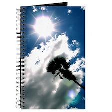 Palm & Sun Journal