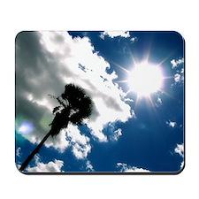 Palm & Sun Mousepad