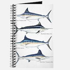 4 Marlin Journal