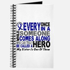 HERO Comes Along 1 Sister CC Journal