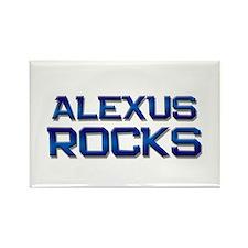 alexus rocks Rectangle Magnet