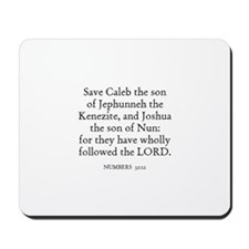 NUMBERS  32:12 Mousepad