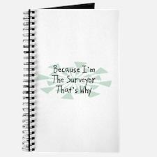 Because Surveyor Journal