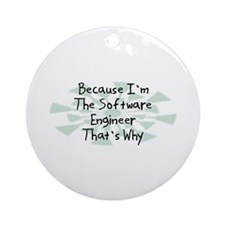 Because Software Engineer Ornament (Round)