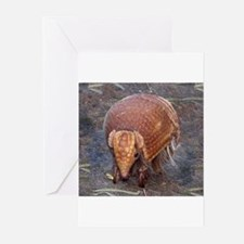 ArmadilloMouse Greeting Cards
