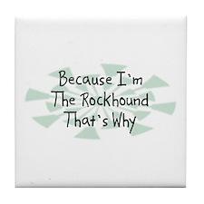 Because Rockhound Tile Coaster