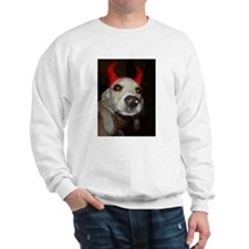 Funny Begal Sweatshirt