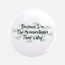 """Because Meteorologist 3.5"""" Button (100 pack)"""