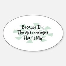 Because Meteorologist Oval Sticker (10 pk)