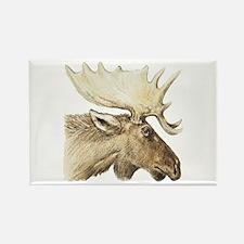 moose drawing Rectangle Magnet